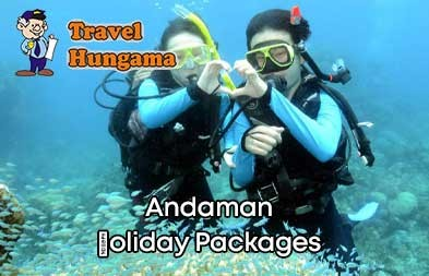Holiday Package 1
